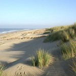 Texel Strand mit Dünen